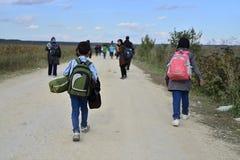 Rifugiati nel Sid (serbo - confine di Croatina) Immagini Stock