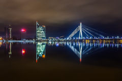 Riga adorabile Immagine Stock