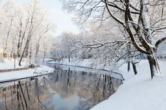 Riga canal in winter. Riga, Latvia. Riga canal in winter. Large park trees covered in snow along the canal Stock Image
