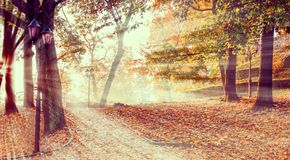 Autumnal morning in central public park of Riga, Latvia, EC royalty free stock photos