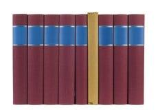 Riga dei libri Immagine Stock Libera da Diritti