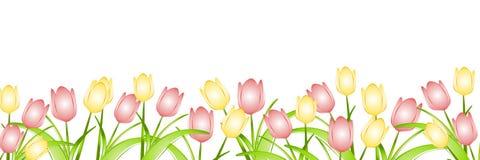 Riga dei tulipani della sorgente   Immagini Stock Libere da Diritti