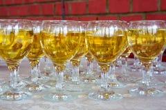 Riga dei vetri di vino Fotografie Stock Libere da Diritti