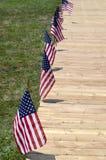 Riga delle bandiere americane Immagine Stock