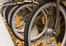 Riga delle biciclette Immagine Stock Libera da Diritti