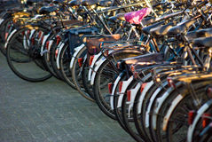 Riga delle biciclette Fotografia Stock Libera da Diritti