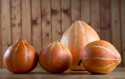 Riga delle zucche su una tabella Fotografie Stock