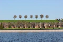 Riga di alberi Immagini Stock