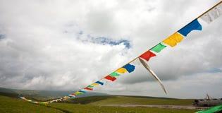 Riga di bandierina del Tibet Fotografia Stock