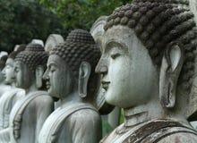 Riga di Buddha Immagine Stock