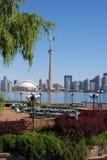Riga di città di Toronto Fotografie Stock