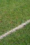 Riga di limite campo di calcio immagini stock