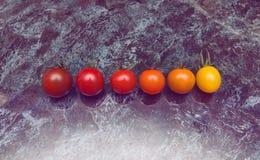 Riga di pomodori Fotografia Stock
