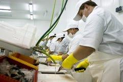 Riga di trasformazione dei prodotti alimentari Immagine Stock Libera da Diritti