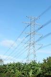 Riga di trasmissione elettrica ad alta tensione sopra una foresta Immagini Stock Libere da Diritti