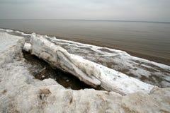 Riga Gulf Coast vinter för blommasnowtid Royaltyfria Bilder