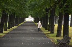 RIGA / LATVIA - July 26, 2013: Old woman is walking alone under the trees in a park Royalty Free Stock Photo