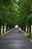 RIGA / LATVIA - July 26, 2013: Old woman is walking alone under the trees in a park Stock Photo