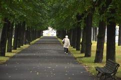 RIGA/LETTLAND - Juli 26, 2013: Den gamla kvinnan går bara under träden i en parkera royaltyfri foto