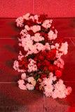 RIGA LETTLAND, NOVEMBER 17, 2017: Nattsikt av de frihetsmonumentBrivibas piemineklisna som dekoreras med nya blommor Royaltyfria Bilder