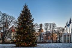 Riga, Lettland Weihnachtsweihnachtsbaum am Abend in den Nachtbeleuchtungs-Lichtern Lizenzfreies Stockfoto