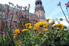 Riga, Litva, 31 Juli, 2017, St Pete ` s Kerk Royalty-vrije Stock Afbeeldingen