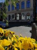 Riga no movimento foto de stock royalty free