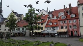 Riga. Old town Stock Photography