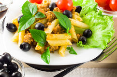 Rigatoni italiano della pasta con salsa bolognese Immagine Stock Libera da Diritti