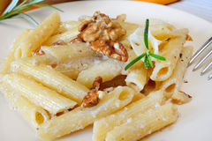 Rigatoni and nuts cream Stock Images
