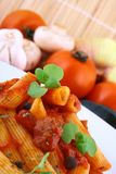 Rigatoni Pasta Royalty Free Stock Images