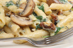 Rigatoni Pasta with Cheese and Mushroom Sauce Royalty Free Stock Photo