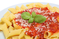 Rigatoni Pasta Meal Royalty Free Stock Photo
