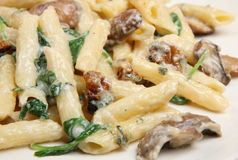 Rigatoni Pasta with Spinach & Cheese Sauce Stock Photo
