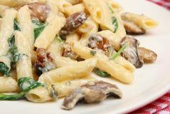 Rigatoni Vegetarian Pasta Meal Stock Image