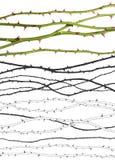 Righe della Rosa con i percorsi di residuo della potatura meccanica Fotografie Stock Libere da Diritti