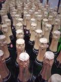 Righe delle bottiglie del champagne Fotografie Stock