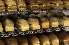 Righe di pane di recente cotto fotografie stock libere da diritti