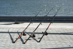 Righe di pesca Fotografie Stock Libere da Diritti