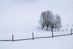 Righe nella neve Fotografie Stock Libere da Diritti