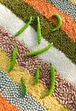 Righe a strisce variopinte dei granuli asciutti Immagini Stock
