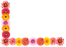 Right-angled flower border Royalty Free Stock Images