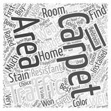 Right Carpet For Your Home word cloud concept word cloud concept vector background Royalty Free Stock Photo