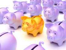 Right choice: Golden piggy bank. Among others over white Royalty Free Stock Photo