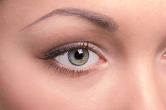 The right eye of a beautiful young woman Royalty Free Stock Photos