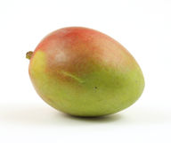 Right front mango Royalty Free Stock Photos