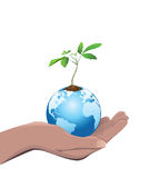 Right hand holding the Earth with a small tree. Royalty Free Stock Image