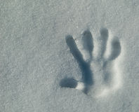 Right Hand Print. A right hand has left its impression in crispy but smooth snow bank Royalty Free Stock Photos