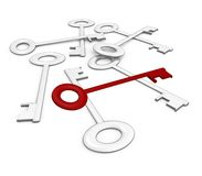 The right key among the rest - 3d image. One red key standing out among the rest, a 3d image stock illustration