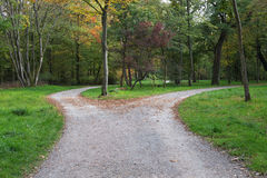 Right or left. ? A fork in the road in a forest royalty free stock photography
